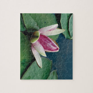 Lotus Flower 8x10 Photo Puzzle with Gift Box