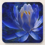 Lotus flower and its meaning coaster