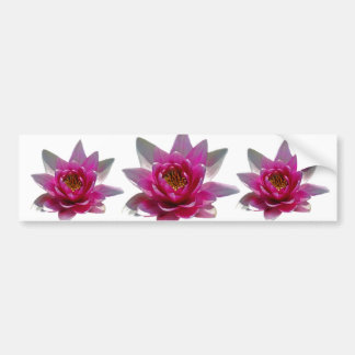 Lotus flower and meaning bumper stickers
