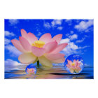 Lotus Flower Born in Water Poster