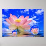 Lotus Flower Born in Water Poster