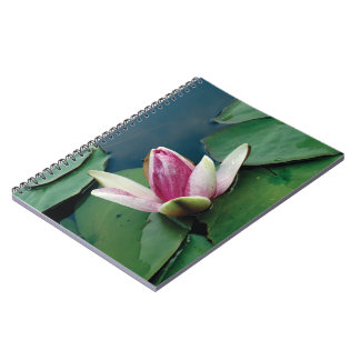 Lotus Flower Buddha Photo Notebook (80 Pages B&W)