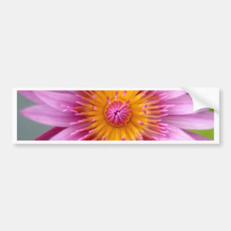 lotus  flower bumper sticker