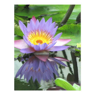 Lotus Flower Custom Flyer