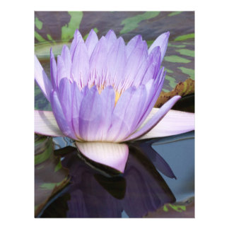 Lotus Flower Flyer