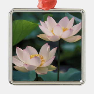 Lotus flower in blossom, China Christmas Ornament