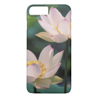 Lotus flower in blossom, China iPhone 8 Plus/7 Plus Case