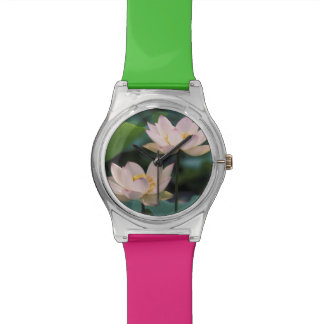 Lotus flower in blossom, China Watches