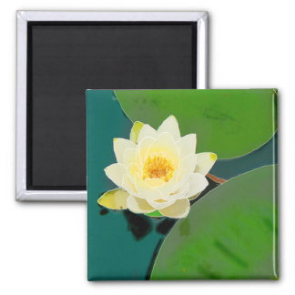 Lotus Flower Magnet