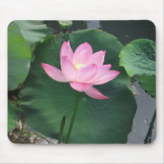 Lotus flower mouse mat