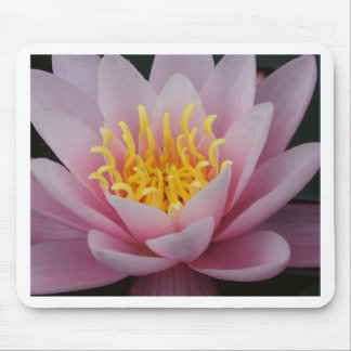 Lotus Flower Mouse Pads