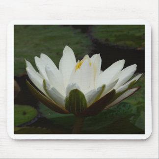 Lotus Flower Mousepads