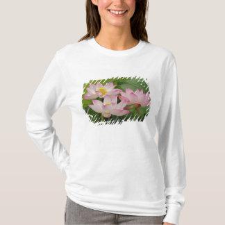 Lotus flower, Nelumbo nucifera, China 2 T-Shirt