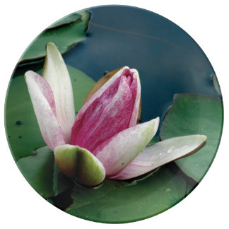 Lotus flower Photo Decorative Porcelain Plate