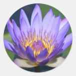 lotus flower stickers