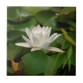 Lotus Flower Ceramic Tile