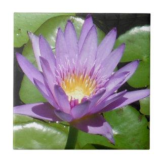 Lotus Flower Small Square Tile