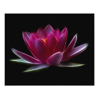 Lotus Flower Water Plant Full Color Flyer