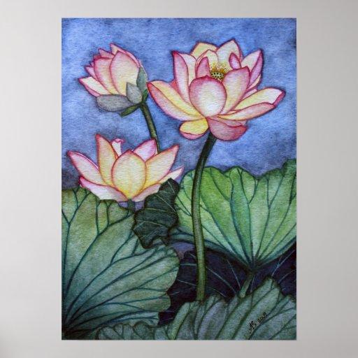 Lotus Flowers #5 Poster Print