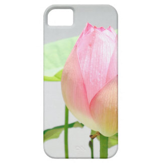 Lotus Flowers Cas iPhone 5/5s Case For The iPhone 5