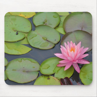 Lotus In The Pond Mouse Mat