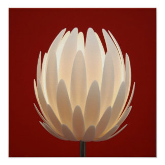 Lotus Lamp .. Yes Its A Living Room Lamp Poster
