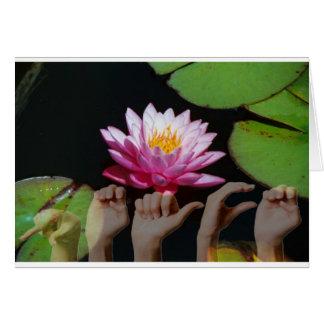 Lotus + Peace ASL Cards