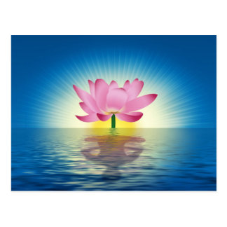 Lotus Reflection Postcard