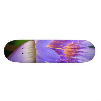 Lotus 18.1 Cm Old School Skateboard Deck