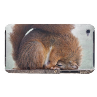 Lotus Squirrel iPod Touch Case