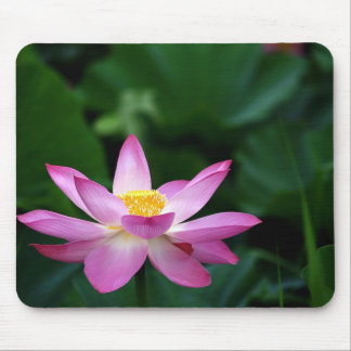 Lotus Tranquillity Mouse Mat