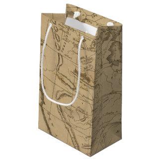 Louisiana 12 small gift bag
