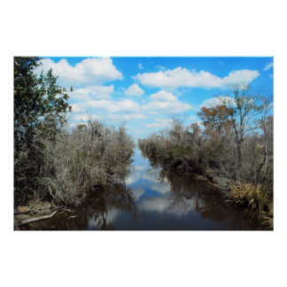 Louisiana bayou photo-canvas art posters