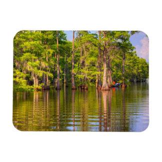 Louisiana Bayou Photo Magnet
