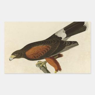 Louisiana Hawk Rectangle Stickers