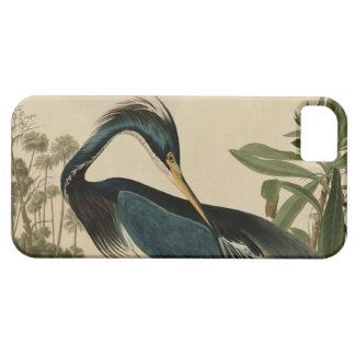 Louisiana Heron Barely There iPhone 5 Case