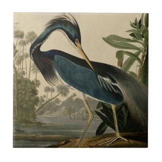 Louisiana Heron Small Square Tile