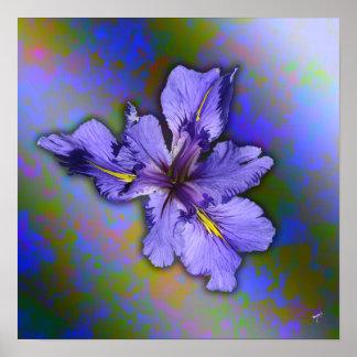 Louisiana Iris Posters