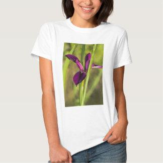Louisiana Purple Gamecock Iris Tshirt