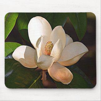 Louisiana Southern Magnolia Mouse Pad