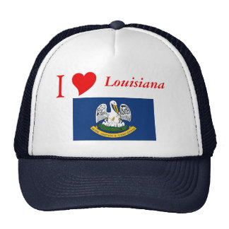 Louisiana State Flag Cap