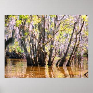Louisiana Swamp Poster