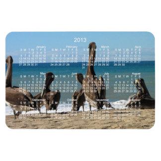 Lounging Beach Pelicans; 2013 Calendar Vinyl Magnet