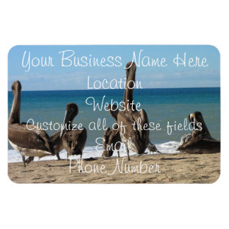Lounging Beach Pelicans Rectangular Photo Magnet