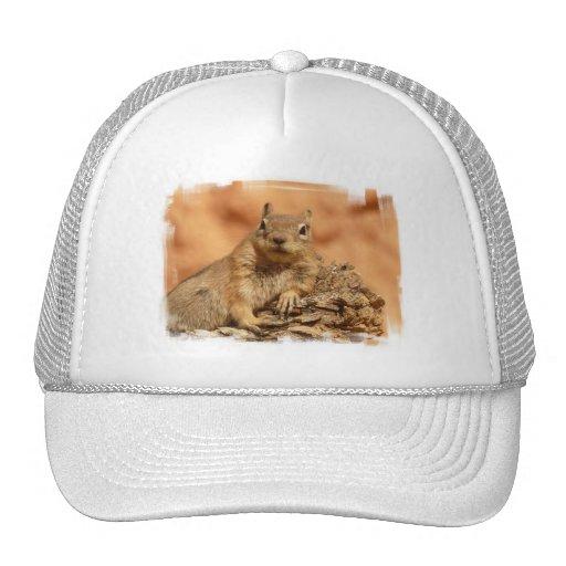 Lounging Chipmunk Baseball Hat