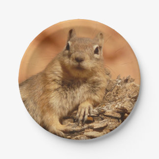Lounging Chipmunk 7 Inch Paper Plate