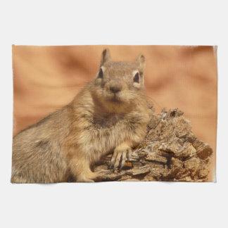 Lounging Chipmunk Towel