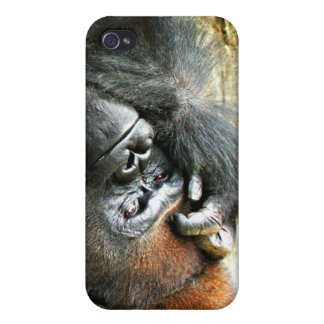 Lounging Gorilla  iPhone 4/4S Cover
