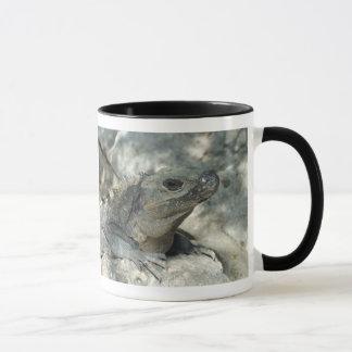 Lounging Iguana Mug