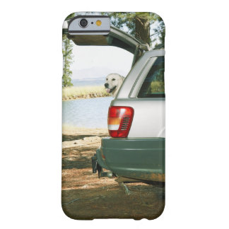 Lourensford, Somerset West, South Africa Barely There iPhone 6 Case